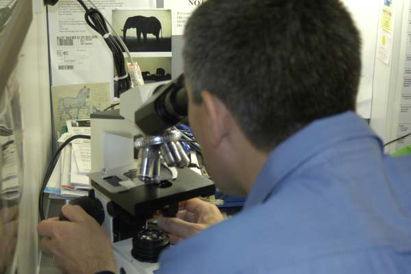 Dr James Thompson Microscope