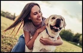 Pet Insurance Claims