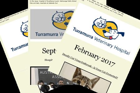 Vet Newsletters