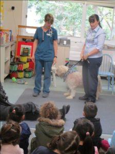 Vet Dr Gretta at Preschool