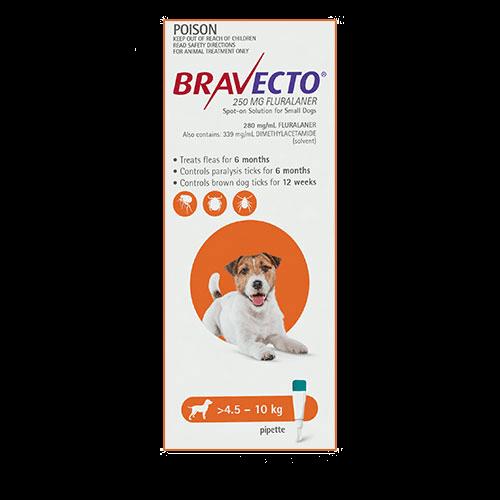 Bravecto Spot-On Dogs Orange